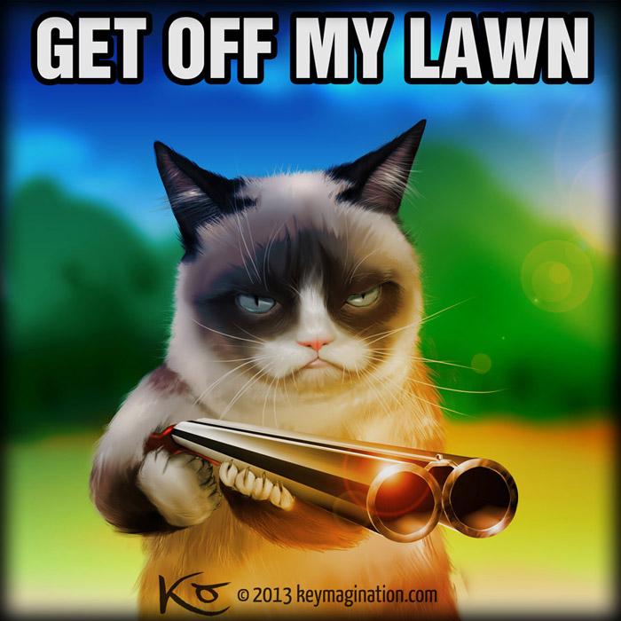 grumpy_cat_get_off_my_lawn_.jpg.b5b92fbcc20edbe4900f3f838e0471e9.jpg