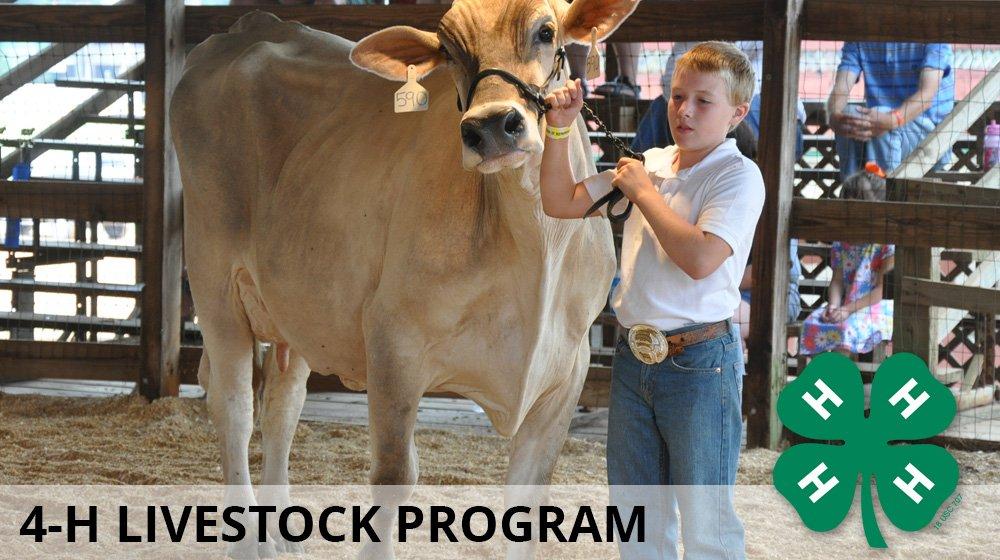 livestock_4h.thumb.jpg.9a4ded400dda3bee706fe782f675c955.jpg