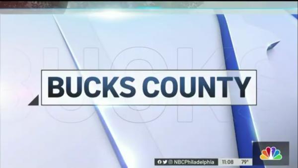 Bucks County Sting